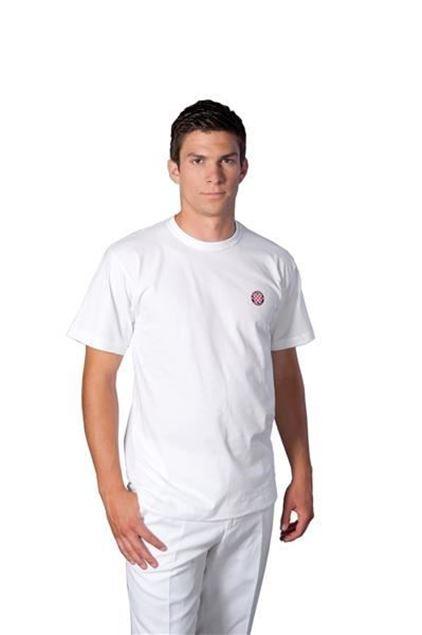 Picture of Men's T-shirt Hajduk