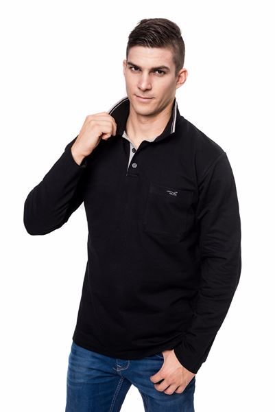 Picture of Men's polo pique long sleeves shirt