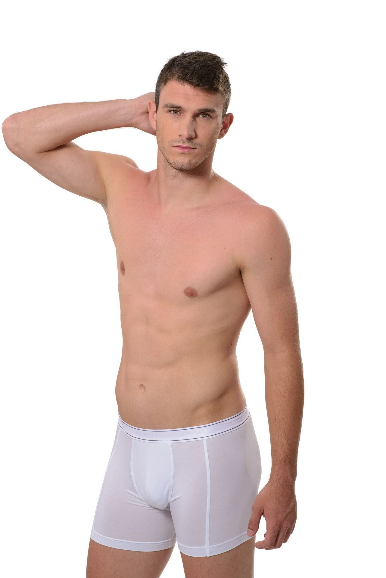 Picture of Men's boxer briefs